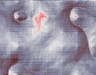 ganzheitliche kieferorthopaedie wuppertal